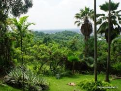 Guayaquil. Botanical garden. (11)