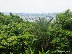 Guayaquil. Botanical garden. (8)