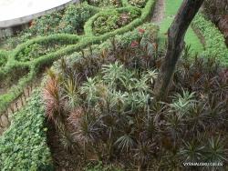 Guayaquil. Jardines del Malecon. (10)