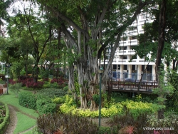 Guayaquil. Jardines del Malecon. (6)