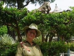 Guayaquil. Seminario park. Green iguana (Iguana iguana) (11)