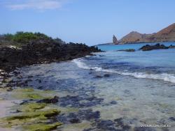 Santiago Isl. Sullivan Bay. (15)