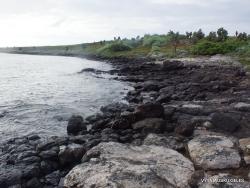 Santiago Isl. Sullivan Bay. (18)