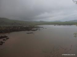 Floreana Isl. Cormorant Point. (2)