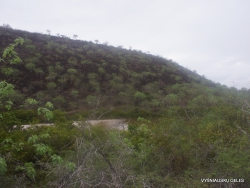 Floreana Isl. Cormorant Point. (5)