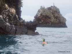 Floreana Isl. Devil's Crown. (14)