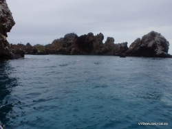 Floreana Isl. Devil's Crown. (15)
