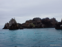 Floreana Isl. Devil's Crown. (18)