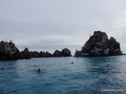 Floreana Isl. Devil's Crown. (21)