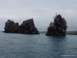 Floreana Isl. Devil's Crown. (31)