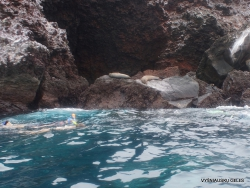 Floreana Isl. Devil's Crown. (5)