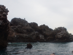 Floreana Isl. Devil's Crown. (9)
