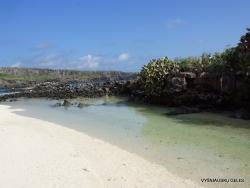 Genovesa Isl. Darwin Bay. (13)