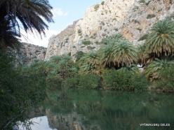 Preveli gorge (11)