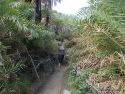 Preveli gorge (14)