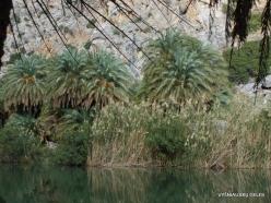 Preveli gorge (8)
