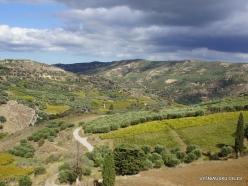 Wiew from Paliani Monastery (4)