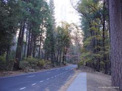 Josemičio nacionalinis parkas. Josemičio slėnis (3)