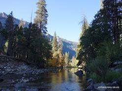 Josemičio nacionalinis parkas. Josemičio slėnis. Merced upė (4)