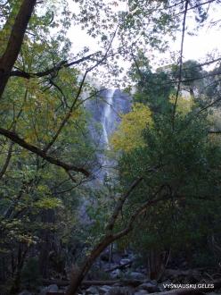Josemičio nacionalinis parkas. Nuotakos šydo krioklys (4)