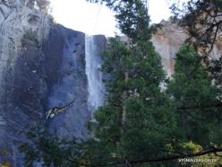 Josemičio nacionalinis parkas. Nuotakos šydo krioklys