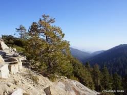 Karalių kanjono nacionalinis parkas (10)