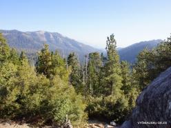 Karalių kanjono nacionalinis parkas (15)