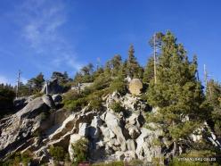 Karalių kanjono nacionalinis parkas (4)