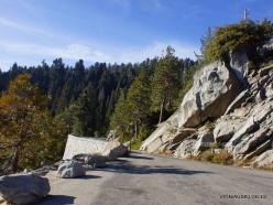 Karalių kanjono nacionalinis parkas (5)