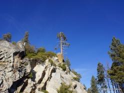 Karalių kanjono nacionalinis parkas (6)