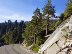 Karalių kanjono nacionalinis parkas (7)