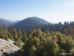 Karalių kanjono nacionalinis parkas (8)