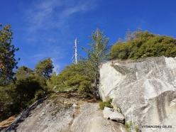 Karalių kanjono nacionalinis parkas (9)