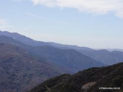 Sekvojos nacionalinis parkas (11)