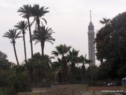Cairo (3)