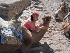 Near Dahab. With Camels
