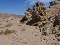 Ras Mohammed national park (9)
