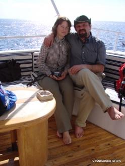 Red Sea. Snorkeling (2)