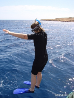 Red Sea. Snorkeling