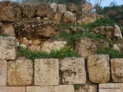 Jerash. Greco-Romanian city of Gearsa (3)