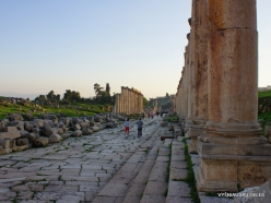 Jerash. Greco-Romanian city of Gearsa. Cardo Maximus (4)