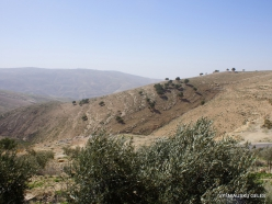 Mount Nebo. Wiew from Mount Nebo (6)