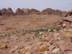 Petra. Ancient City (4)