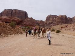 Petra. Ancient City (7)