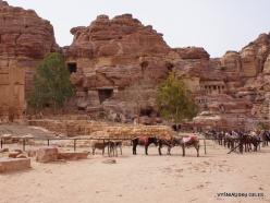 Petra. Ancient City (9)