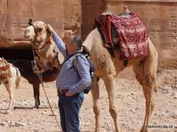 Petra. Centre of city (6)