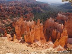 Braiso kanjono nacionalinis parkas (10)