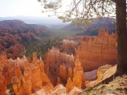 Braiso kanjono nacionalinis parkas (13)