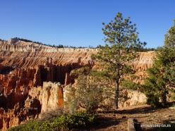 Braiso kanjono nacionalinis parkas (19)