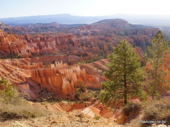 Braiso kanjono nacionalinis parkas (4)